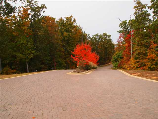 18 Endless View Savannah, TN 38372 - MLS #: 10008784