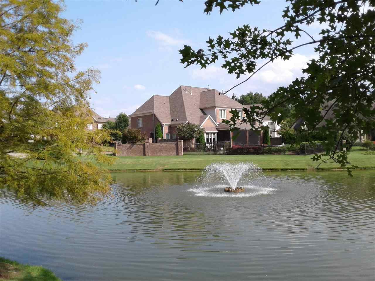 10243 Shea Woods Collierville, TN 38017 - MLS #: 10009035