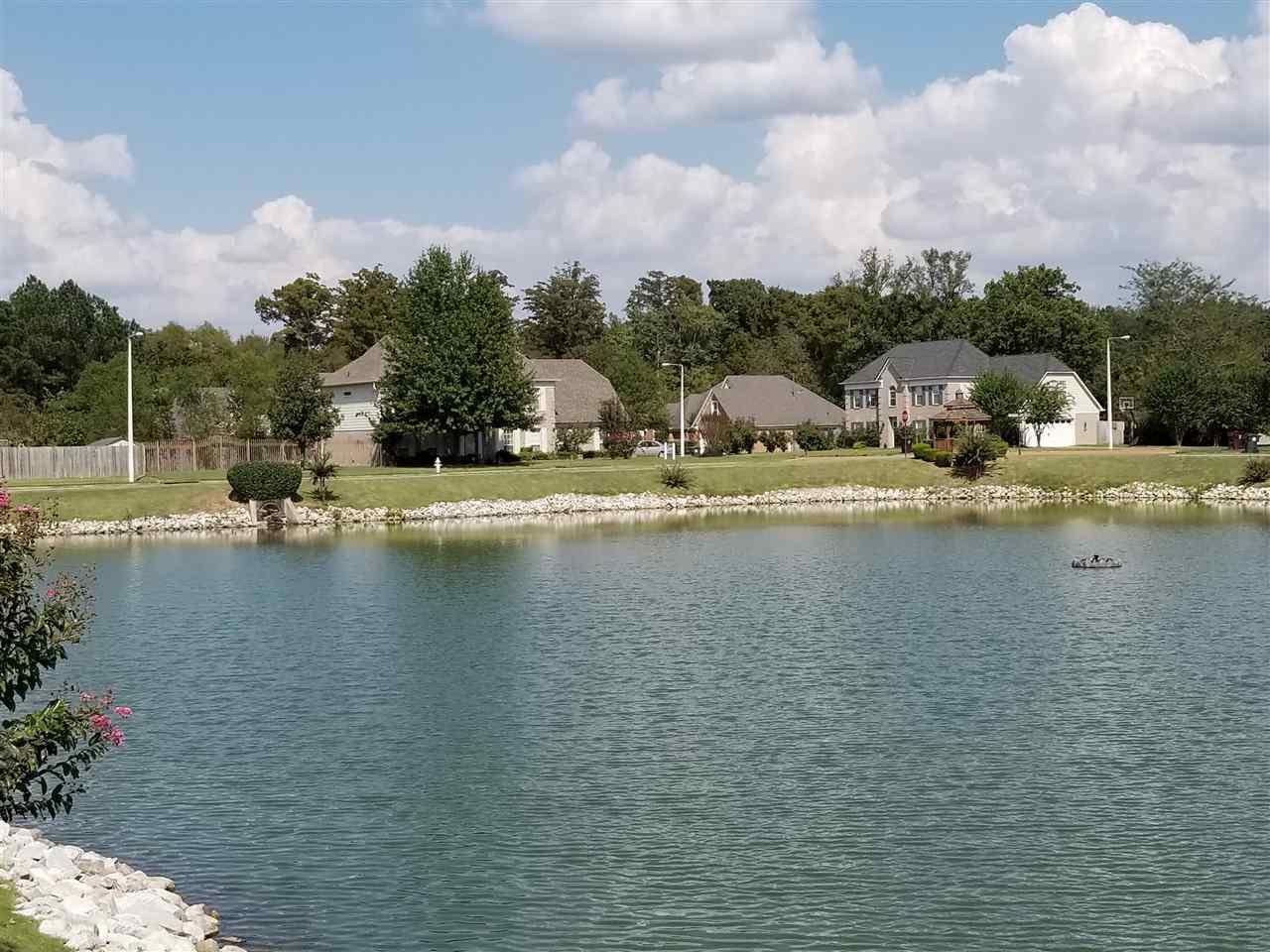 300 River Branch Collierville, TN 38017 - MLS #: 10009772