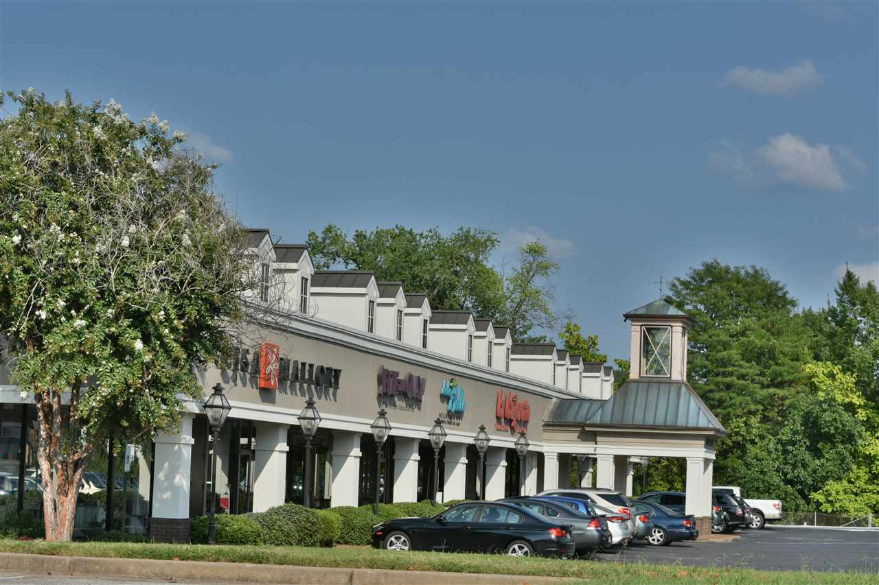 3005 Walnut Grove Memphis, TN 38111 - MLS #: 10010298