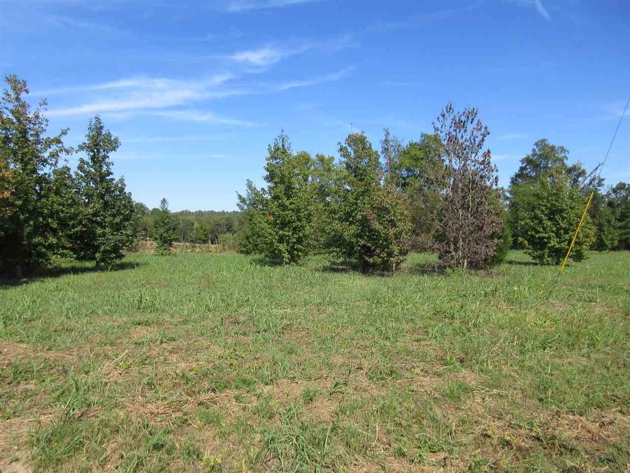 LOTS 57 Col James Hardin Clifton, TN 38425 - MLS #: 10013149