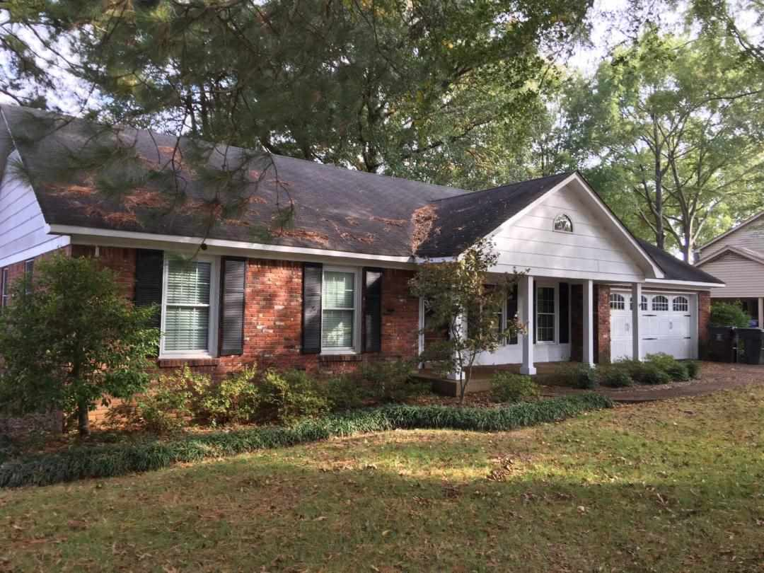 320 Rutledge Collierville, TN 38017 - MLS #: 10014964