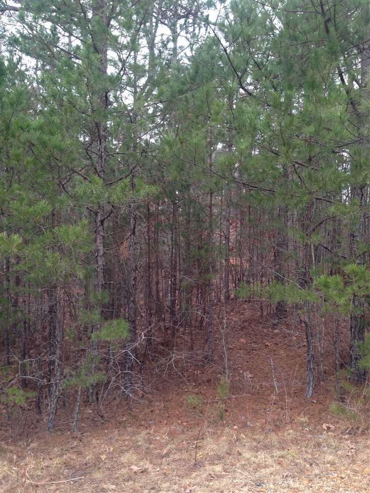 LOT #61 Riverbend Park Iuka, MS 38852 - MLS #: 10019730