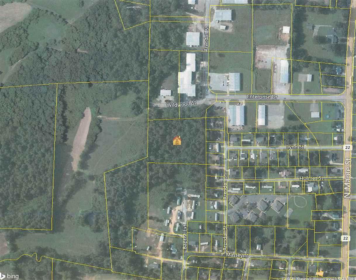 0 Baptist Adamsville, TN 38310 - MLS #: 10020408