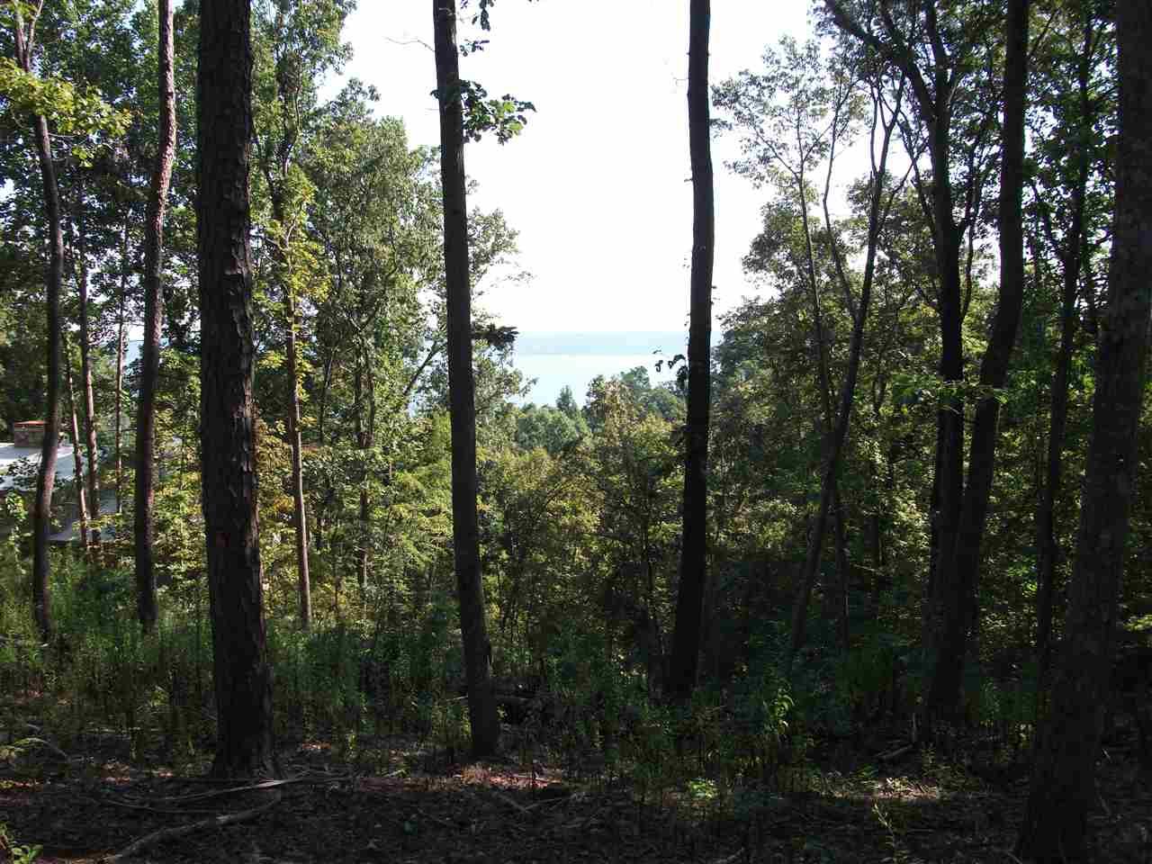 0 Island View Dr./Cbc Lane Counce, TN 38326 - MLS #: 10021070