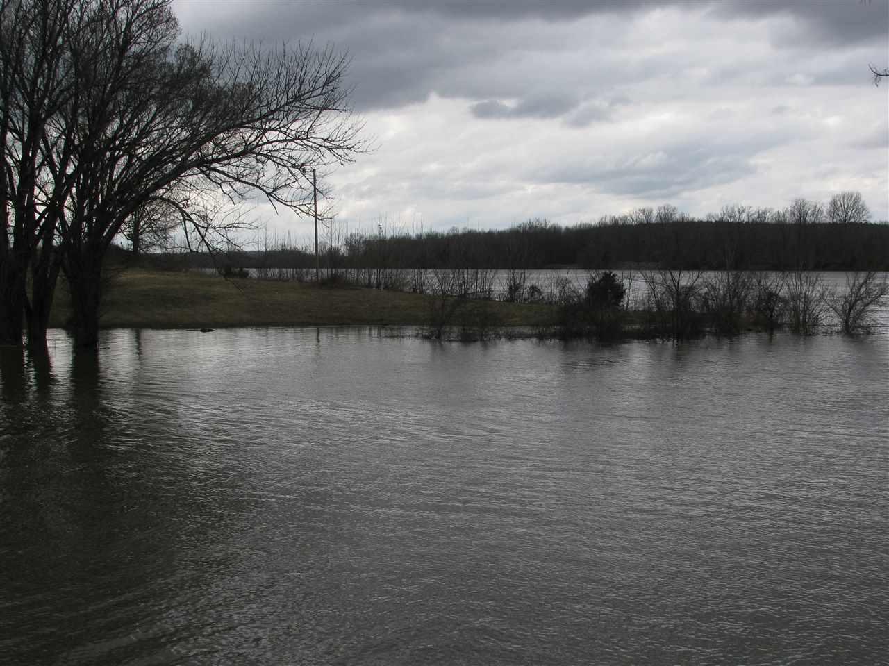 1 Water Clifton, TN 38425 - MLS #: 10021170
