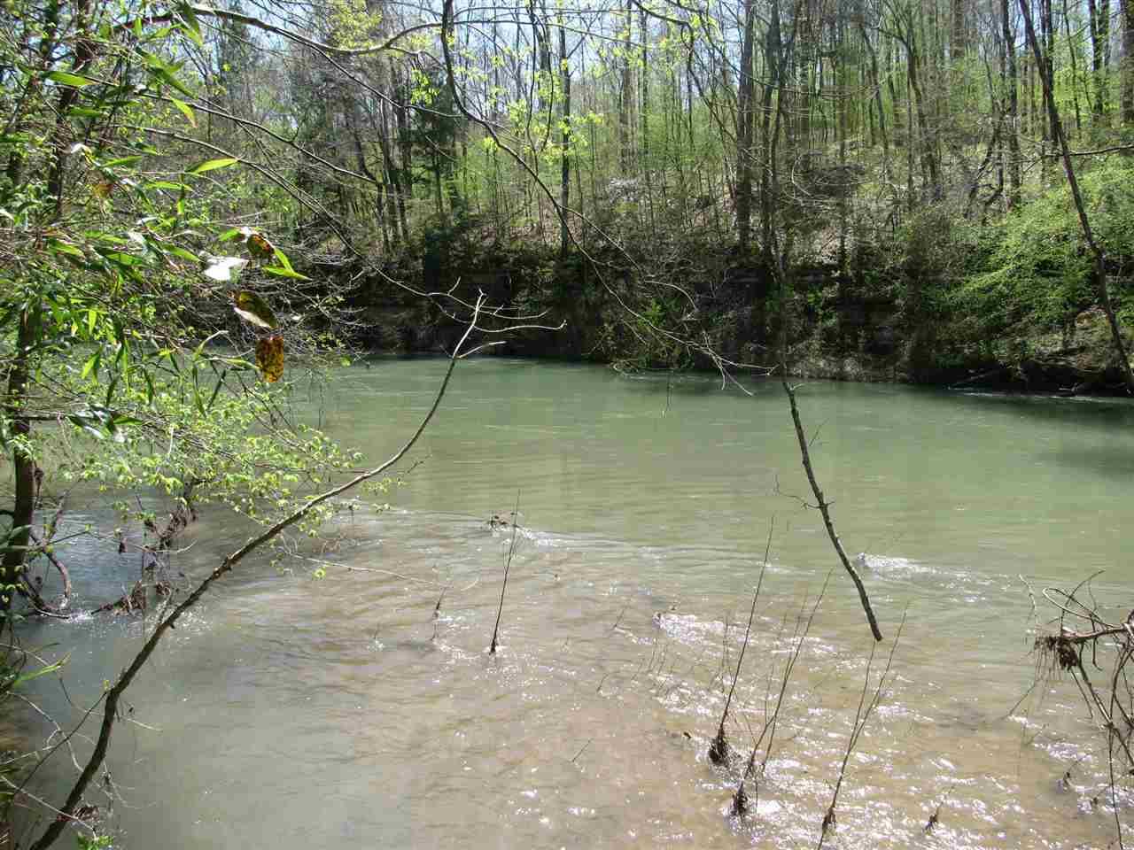 12 Indian Creek Shoals Savannah, TN 38372 - MLS #: 10029343