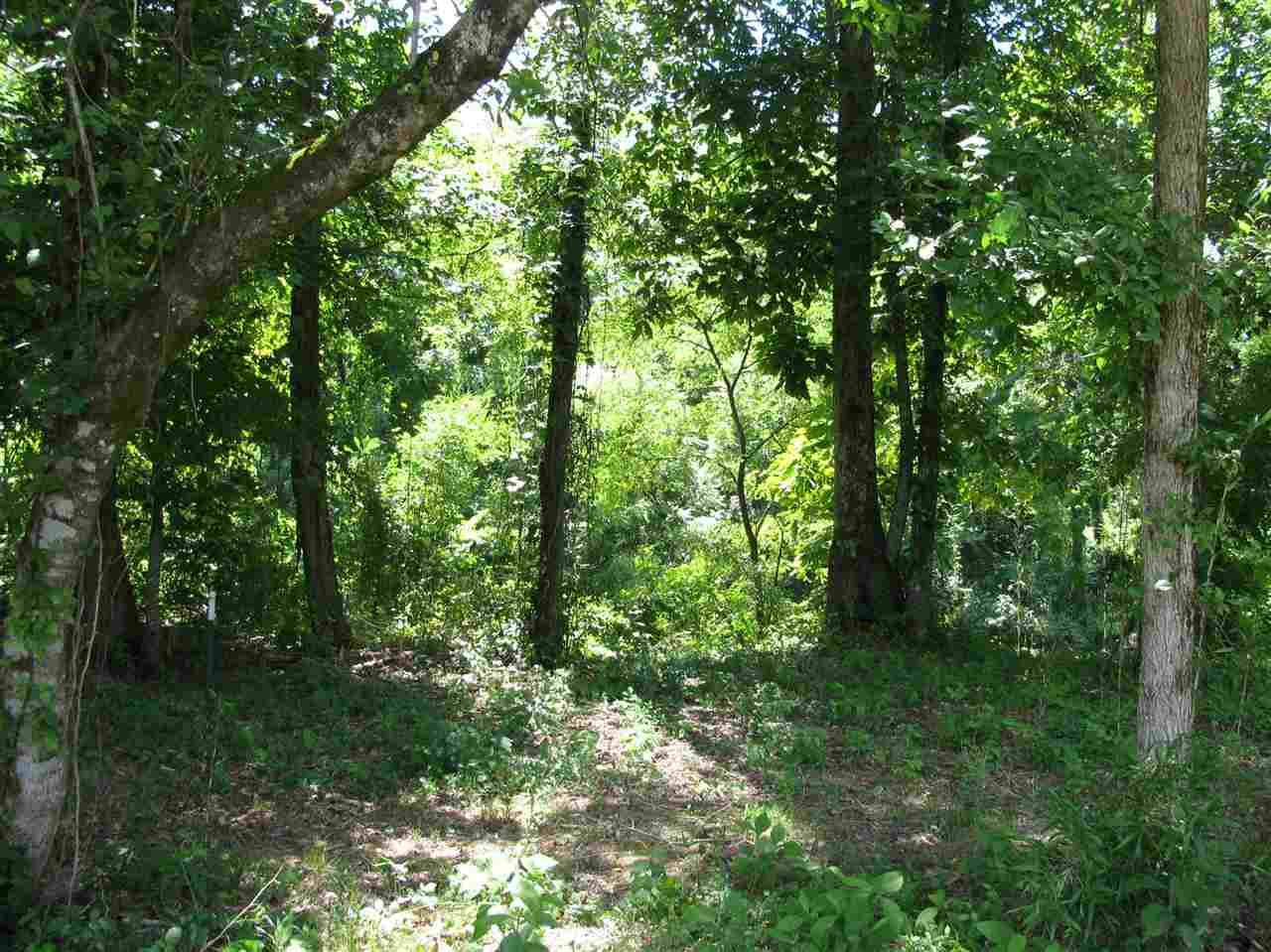 14 Indian Creek Shoals Savannah, TN 38372 - MLS #: 10029355