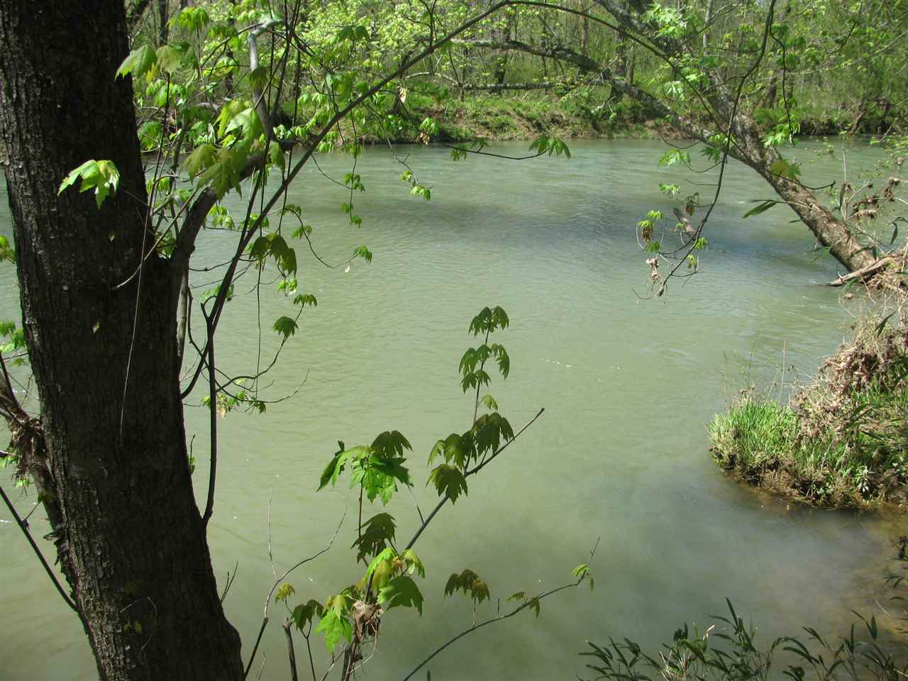 16 Indian Creek Shoals Savannah, TN 38372 - MLS #: 10029366