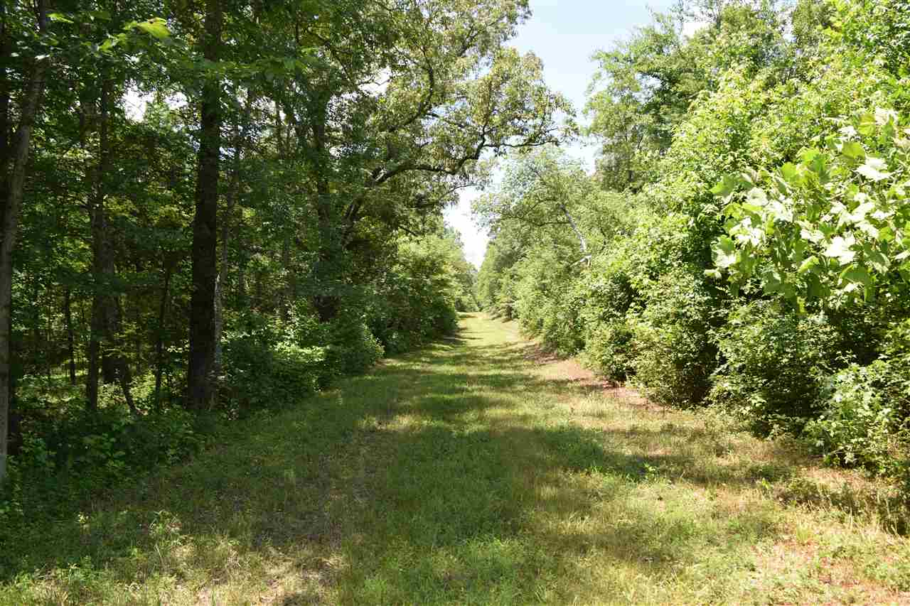 0 Honeysuckle Moscow, TN 38057 - MLS #: 10031627
