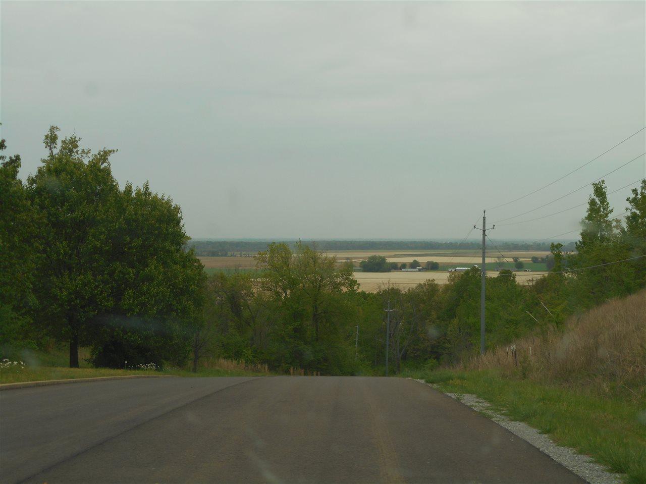 0 Chickasaw Bluff Dyersburg, TN 38025 - MLS #: 9974952