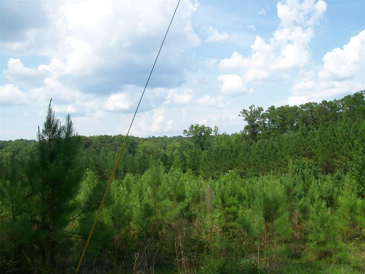 Major Hill Bethel Springs, TN 38315 - MLS #: 9982256