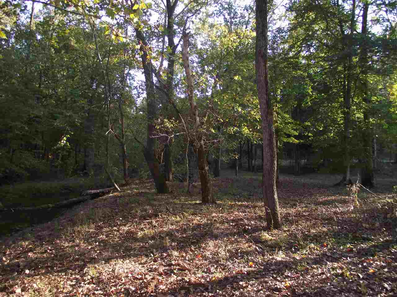2 Allens Creek Hohenwald, TN 38462 - MLS #: 9990119