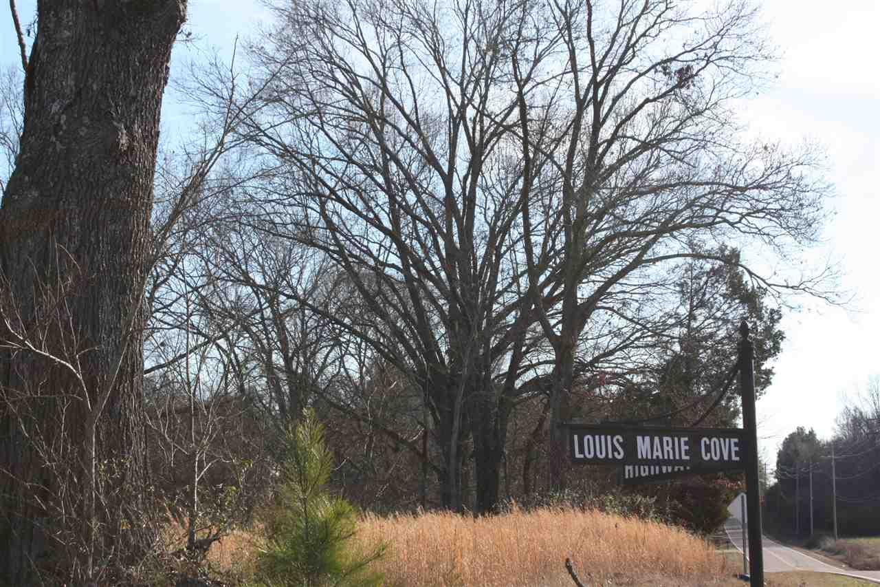 50 Louis Marie Eads, TN 38028 - MLS #: 9993318