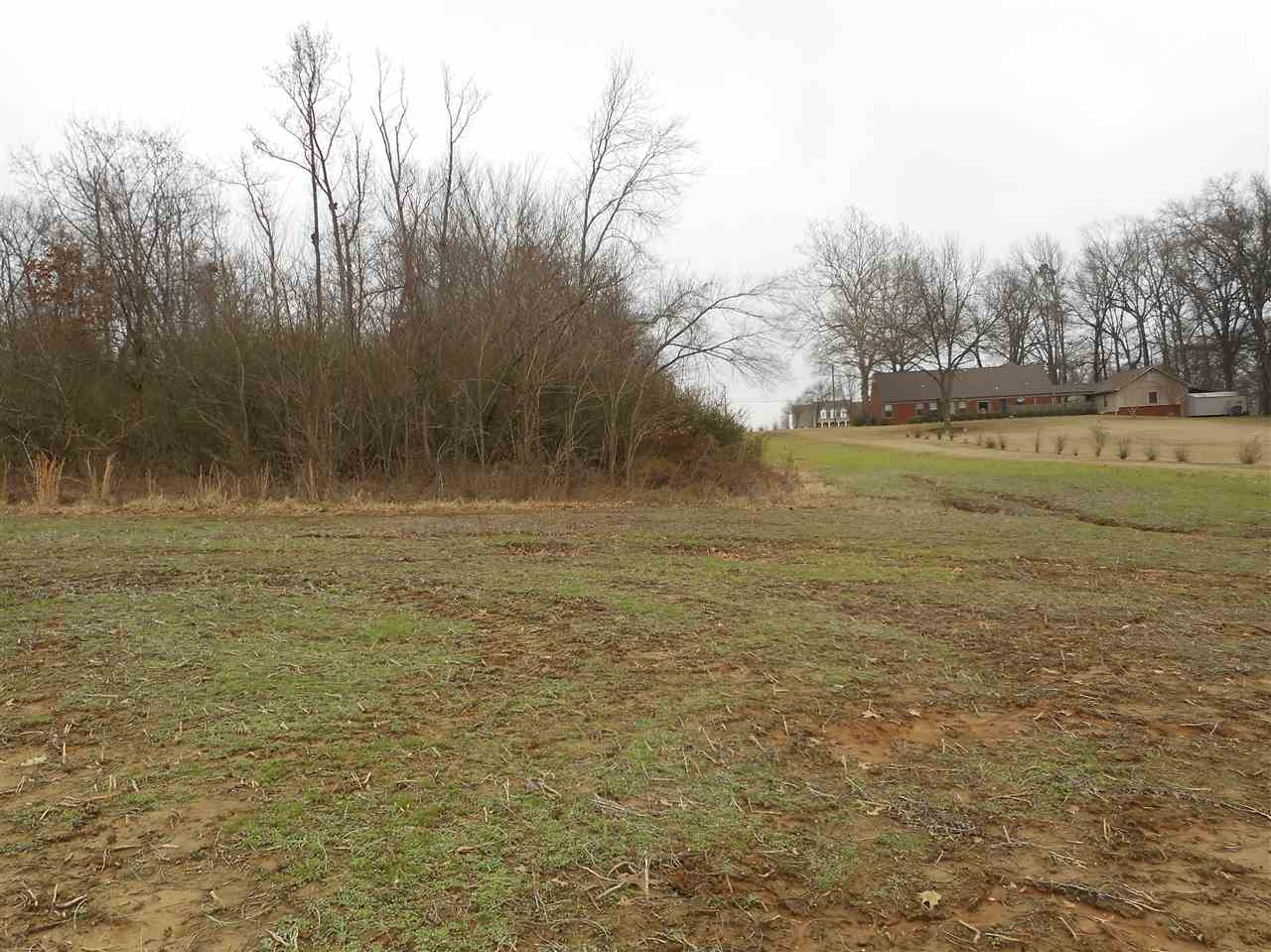 LOT 3 Pleasant Ridge Millington, TN 38053 - MLS #: 9993643