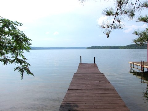 LOT 27 Buchanan Peninsula Cherokee, AL 35616 - MLS #: 9995409