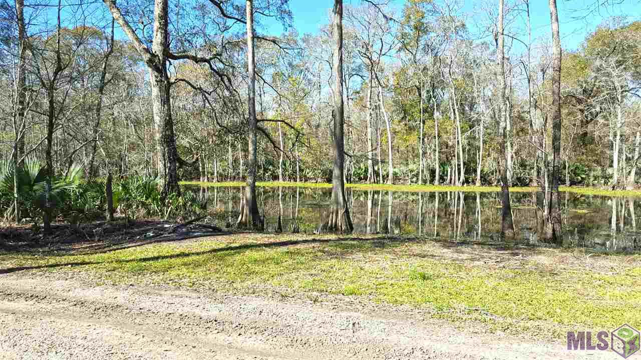 Enjoy your camp/home located on peaceful Bayou Pierre which feeds into Amite River. Come see this peaceful and somewhat remote home with large outdoor decks and outdoor kitchen. Owner has installed many improvements including wood floors in living areas, eat in bar in kitchen, new paint and rustic open custom cabinets. New Roof in 2011. Land extends to the water. With a 6' to 8' deck you could dock your boat. Motivated Seller.  *Structure square footage nor lot dimensions warranted by Realtor*