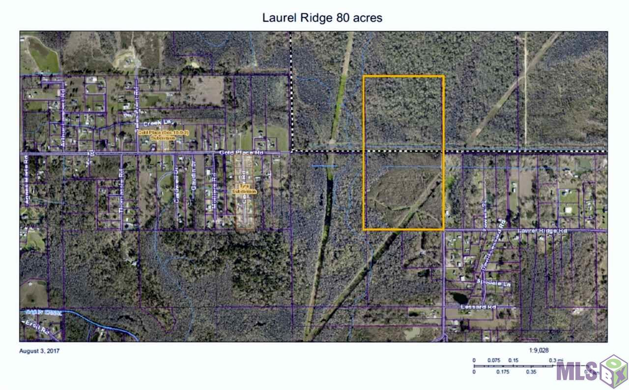 TBD LAUREL RIDGE RD, St Amant, LA 70774