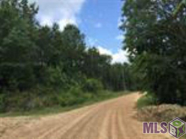 15502 Starling Water Drive Lithia, FL 33547 - MLS #: T2891569