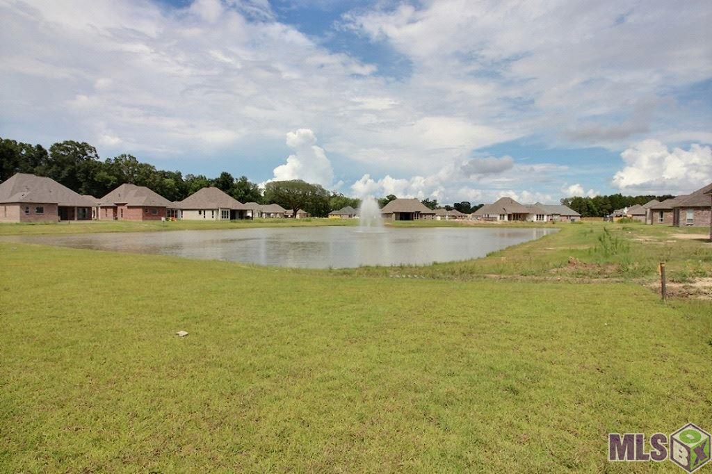 14078 DOE RUN DR, PRAIRIEVILLE, LA 70769  Photo 4