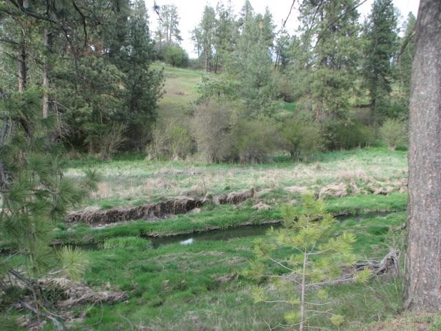Land for Sale at S Hoxie S Hoxie Rockford, Washington 99030 United States