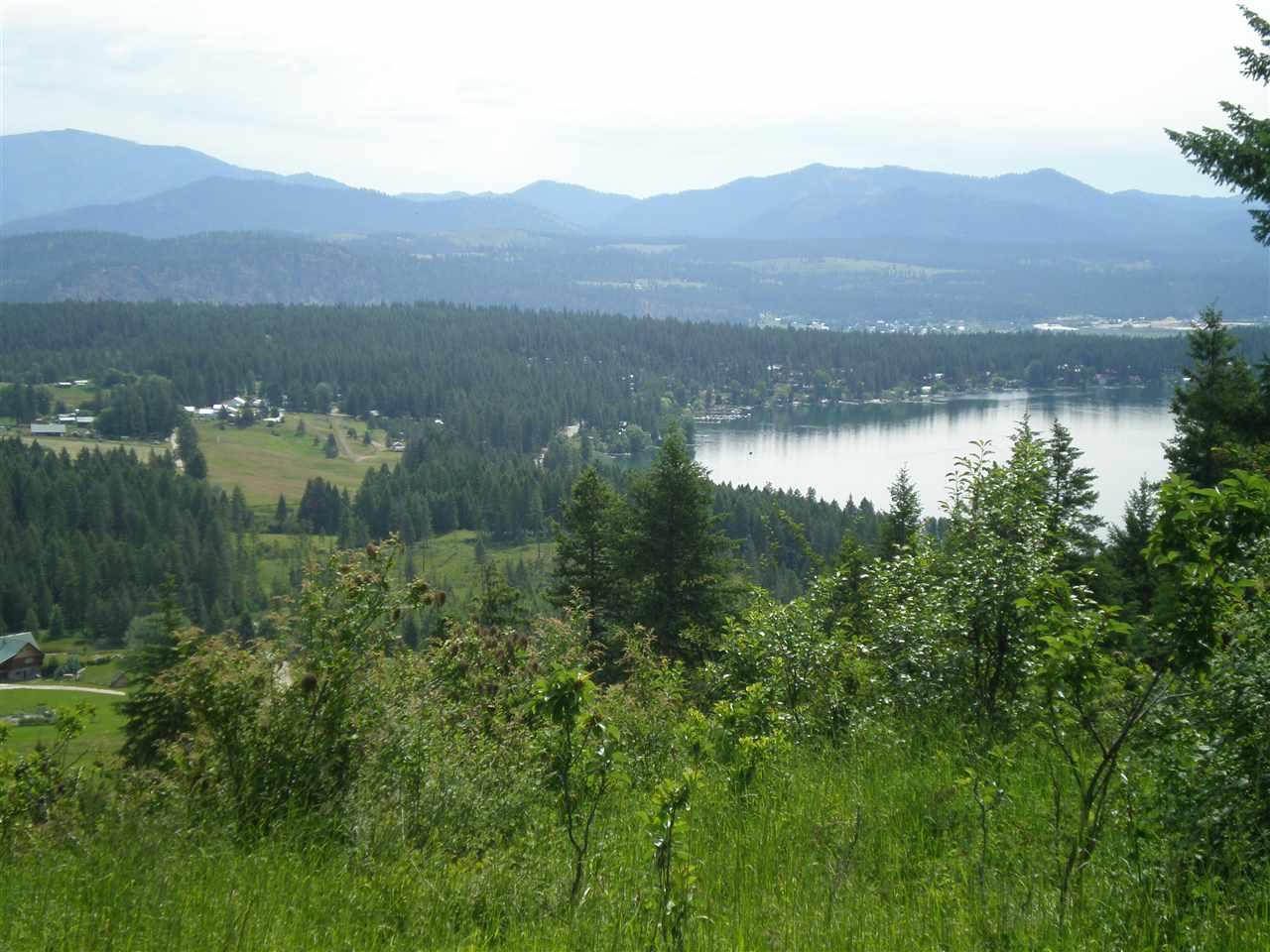 Land for Sale at XXXX Hoag Road XXXX Hoag Road Valley, Washington 99181 United States