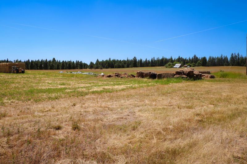 Land for Sale at 42702 N Sherman Road 42702 N Sherman Road Deer Park, Washington 99006 United States