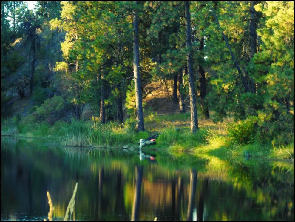 Land for Sale at 9007 W Jensen Road 9007 W Jensen Road Cheney, Washington 99004 United States