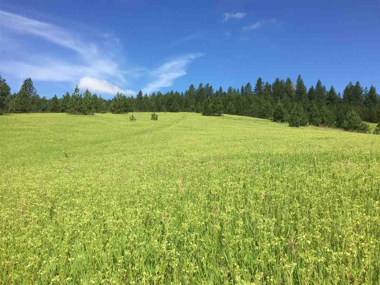 Land for Sale at XX S Campbell Road XX S Campbell Road Rockford, Washington 99030 United States