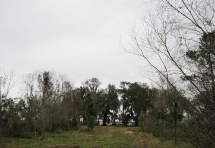 Country Living at the River! Bring your horses, ATV's, and boats and enjoy over just over 11 acres with direct St. Johns Riverfront lot. 152X305 in East Palatka. Located just off Federal Point Rd. A MUST SEE!! Privacy Galore!! Call Carol Sullivan 904-814-6915 for any questions about this property.