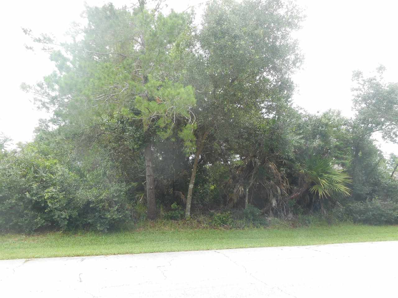 Beautiful 80x125 foot lot waiting for buyer to build their dream home. The lot is high and dry and surrounded by beautiful homes. Located close to Matanzas High School - a must see!