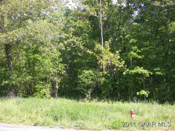 TBD MINE BRANCH RD, CRIMORA, VA 24431