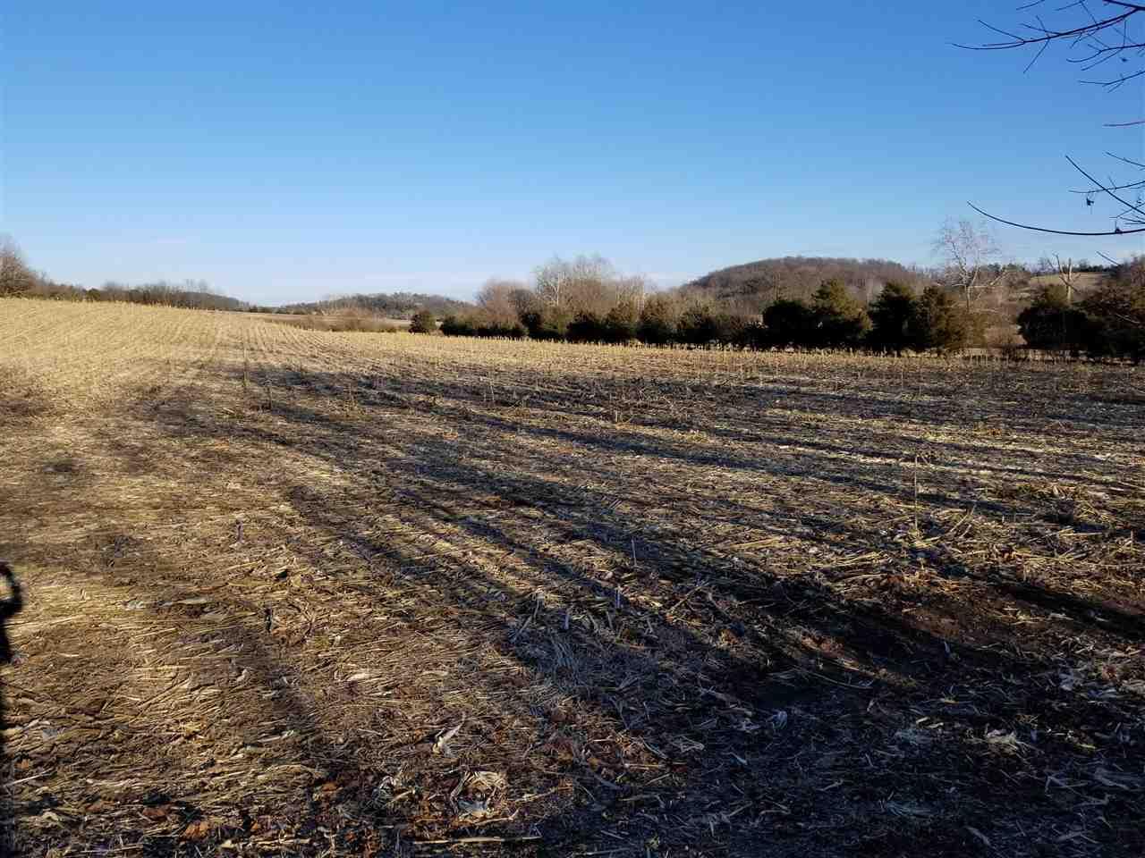 55 acres LEE HWY, WEYERS CAVE, VA 24486