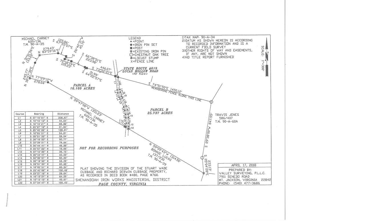 0 LUCAS HOLLOW RD Portion of 90-A-34 Parcel B, STANLEY, VA 22851