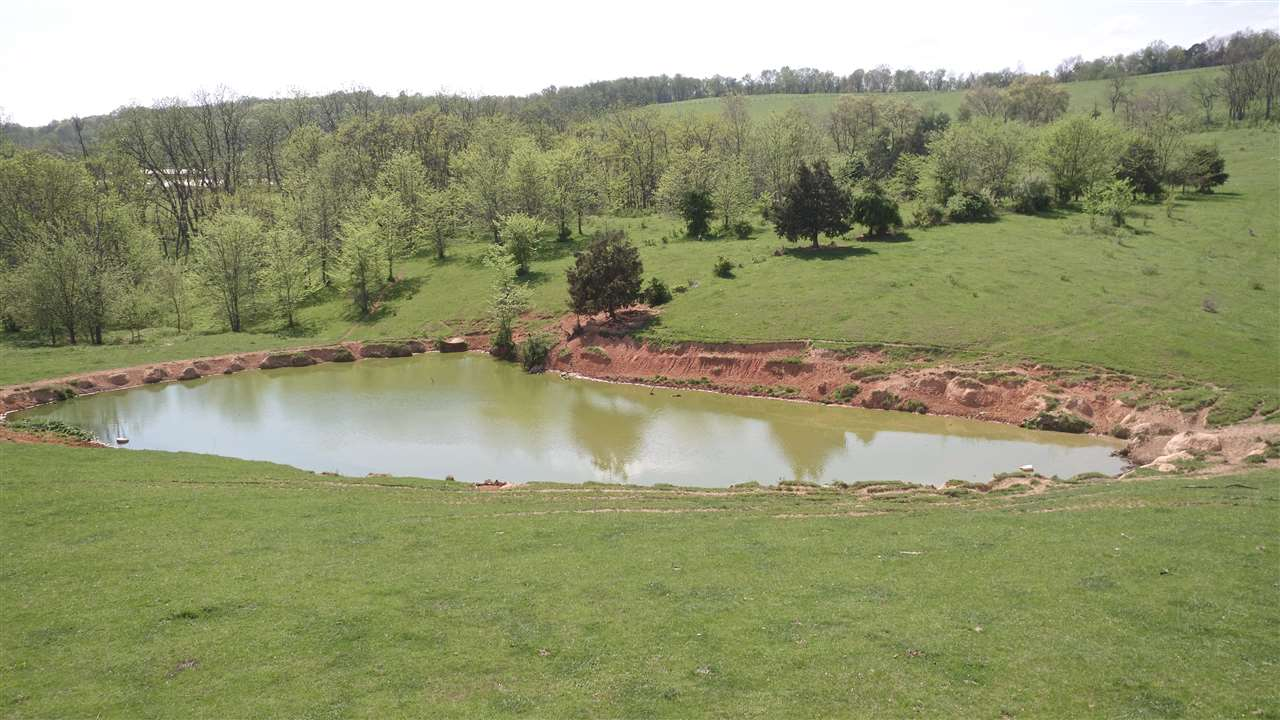 97 acres LEE HWY, VERONA, VA 24482
