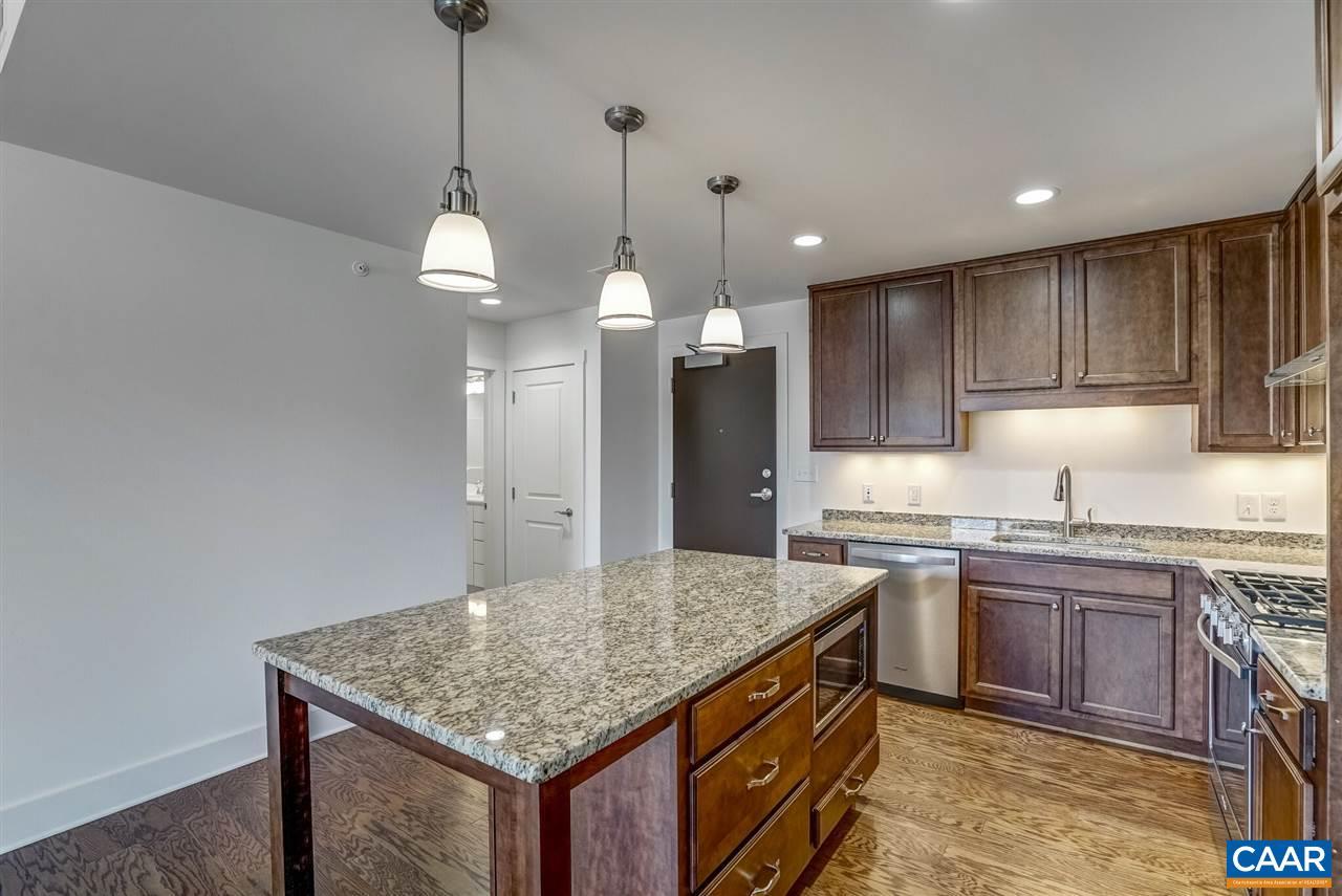1425 TRAILSIDE CT 105 The River House at Riverside Village, CHARLOTTESVILLE, VA 22911