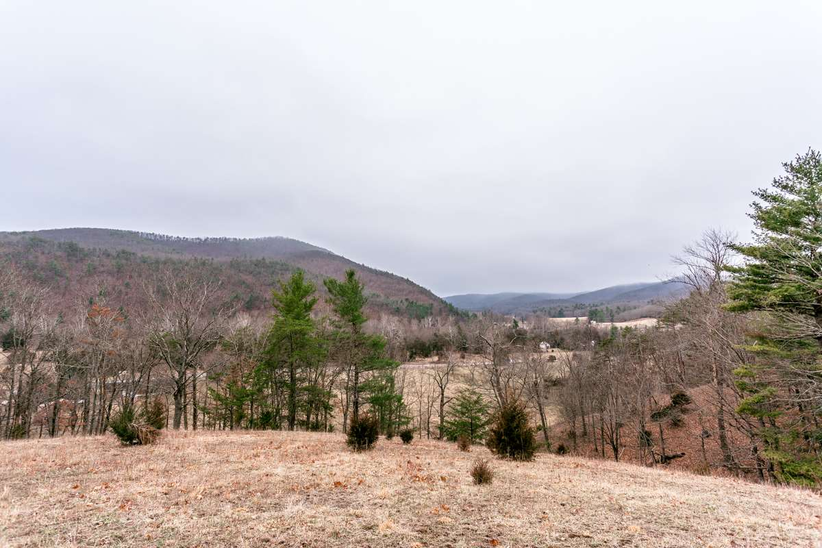 0 LITTLE DRY RIVER RD 19, FULKS RUN, VA 22830
