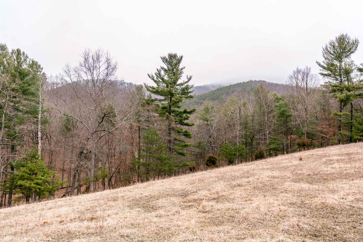 0 LITTLE DRY RIVER RD 15, FULKS RUN, VA 22830