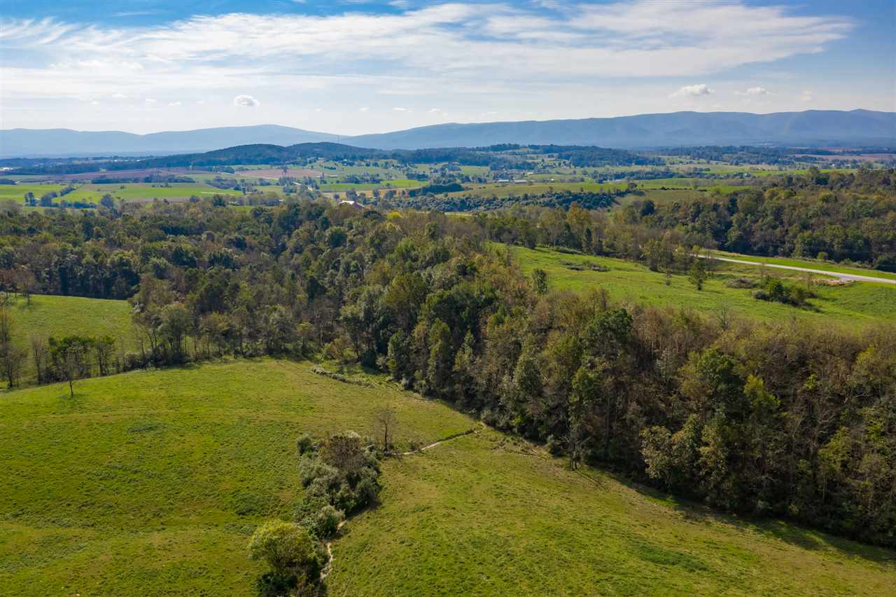 LOT C WHITE HILL RD, MINT SPRING, VA 24463