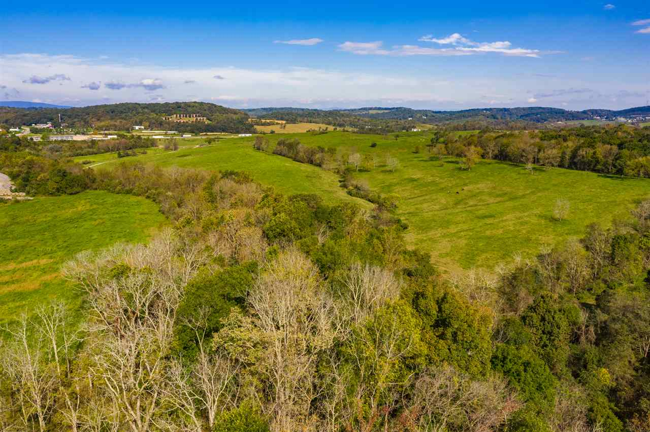 LOT D WHITE HILL RD, MINT SPRING, VA 24463