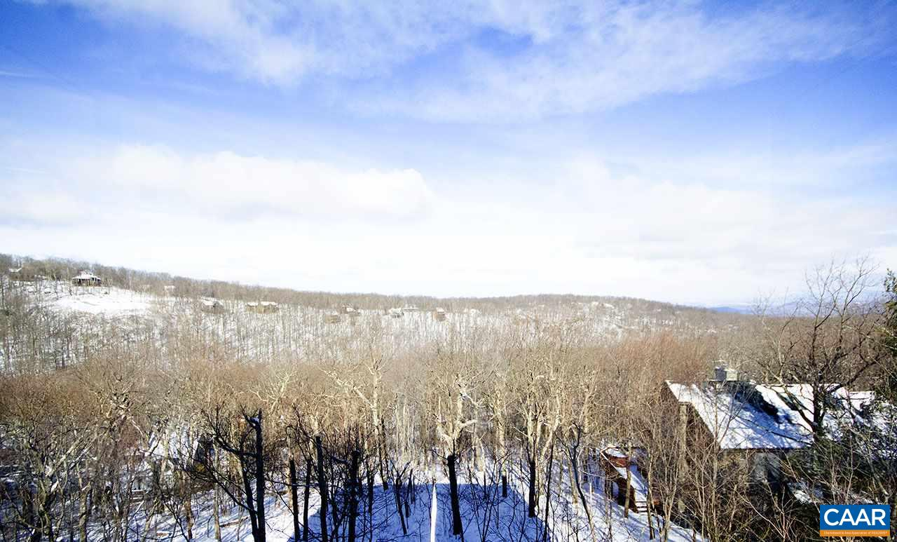 45 TIMBER CAMP DR, WINTERGREEN RESORT, VA 22967