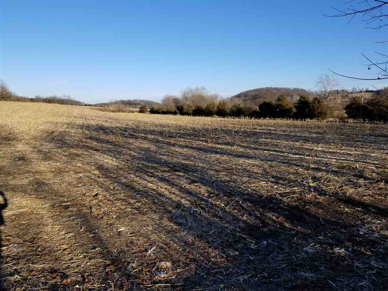 70 acres LEE HWY, WEYERS CAVE, VA 24486