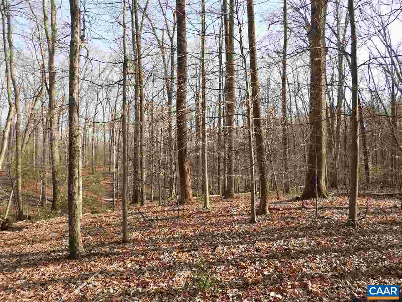 Lots 1,2,3,4 EARLYSVILLE RD lots 1,2,3,4,, EARLYSVILLE, VA 22936