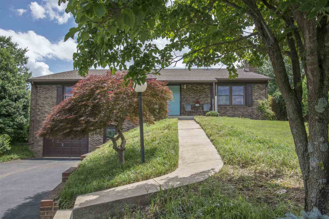578 DICES SPRING RD, WEYERS CAVE, VA 24486