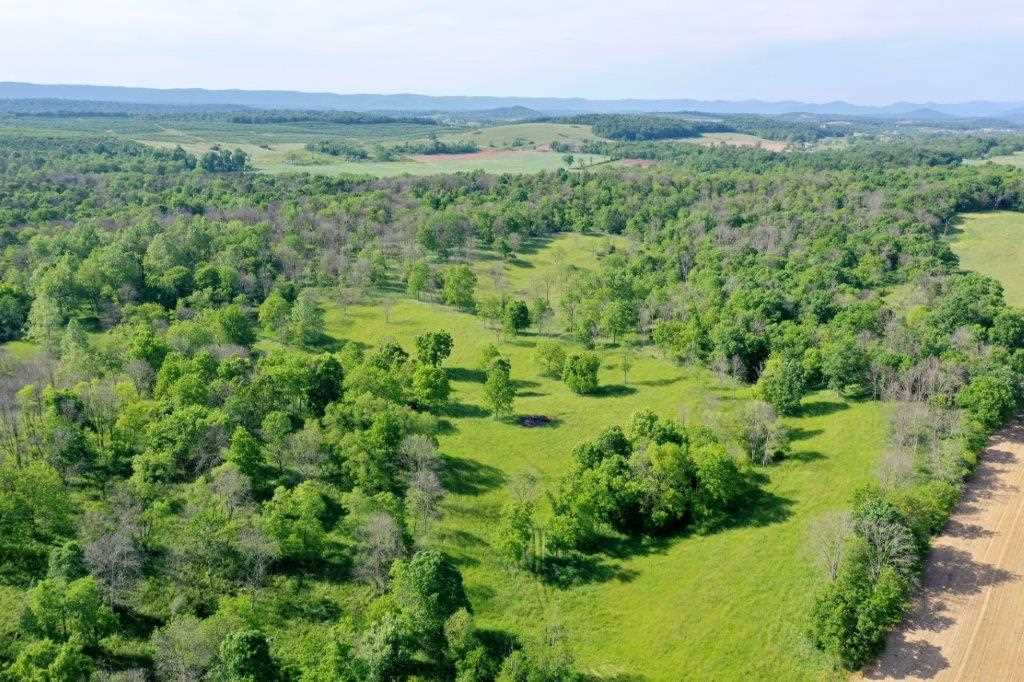 50 acres COLD SPRING RD, TIMBERVILLE, VA 22853