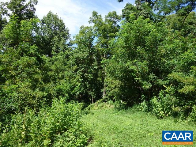 Lot 4 FORKS OF BUFFALO  DR, AMHERST, VA 24521