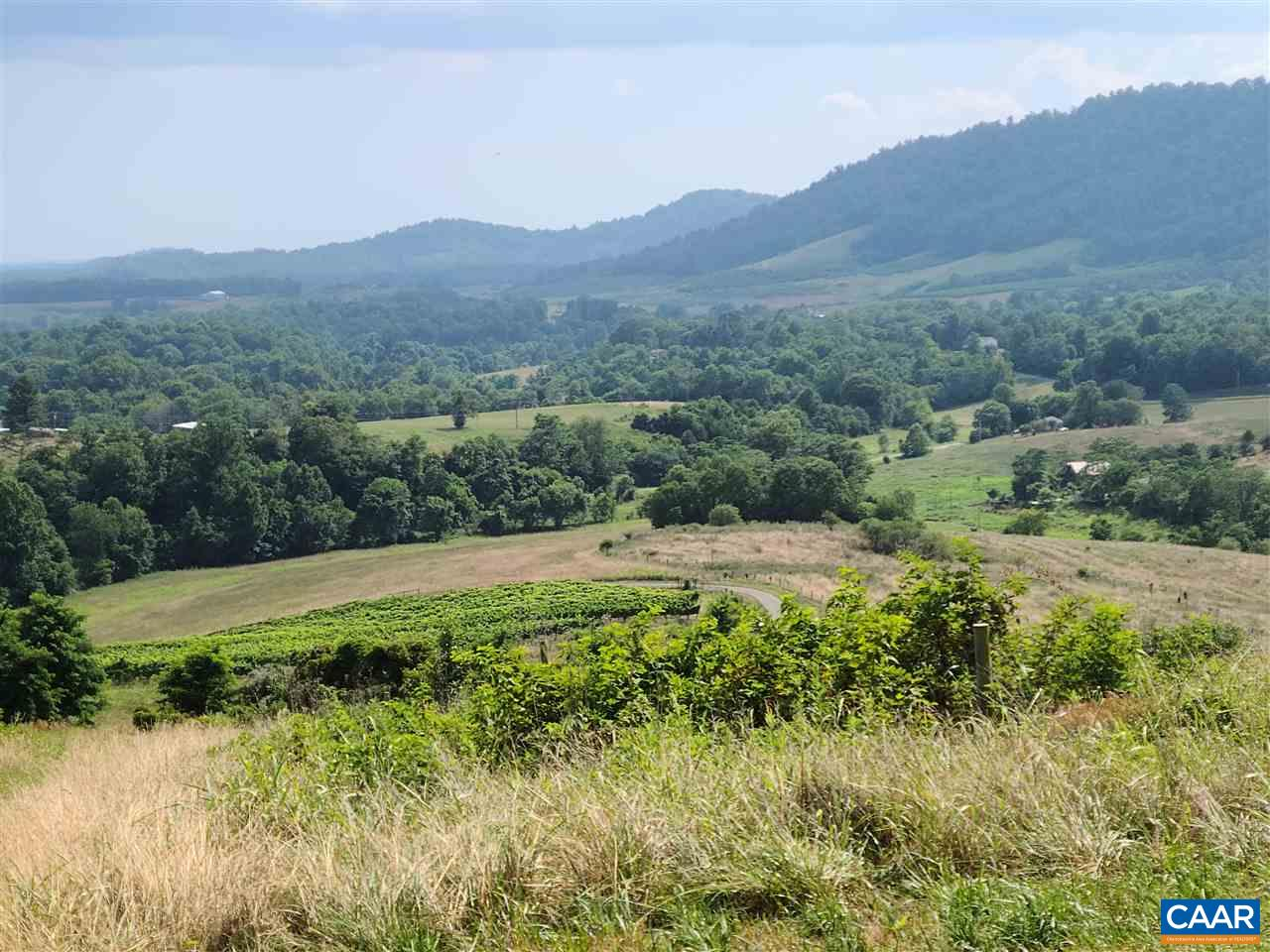 TBD BANTON ORCHARD LN, LOVINGSTON, VA 22949