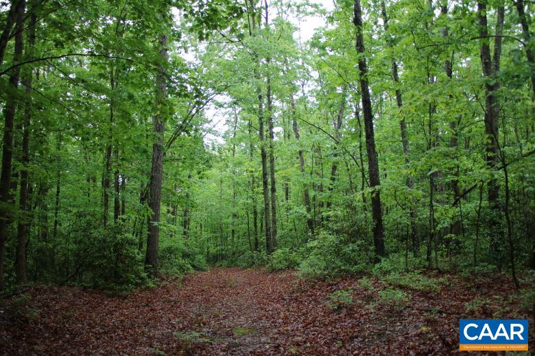 Lot 34 GREEN CREEK RD 050L1, SCHUYLER, VA 22969