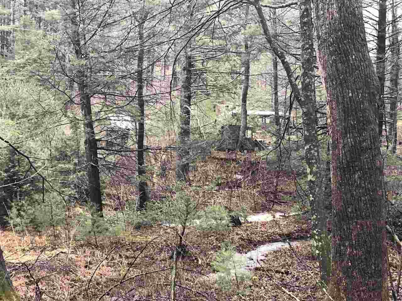 0 MONGOLD HOLLOW RD, MATHIAS, WV 26812