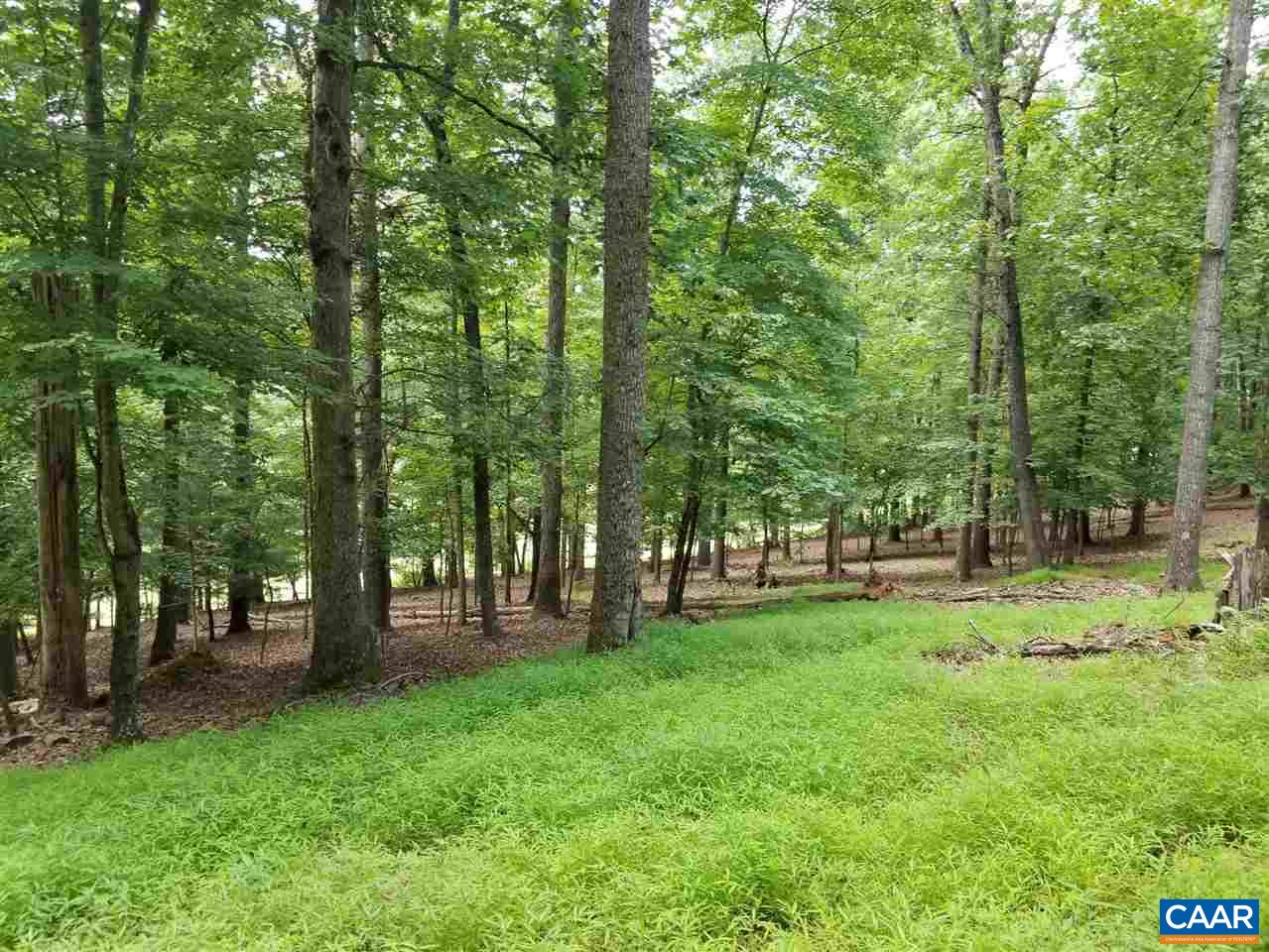 MECHUM VIEW DR 4.75 ACRES LOT FROM LOT#  043A0, CHARLOTTESVILLE, VA 22903